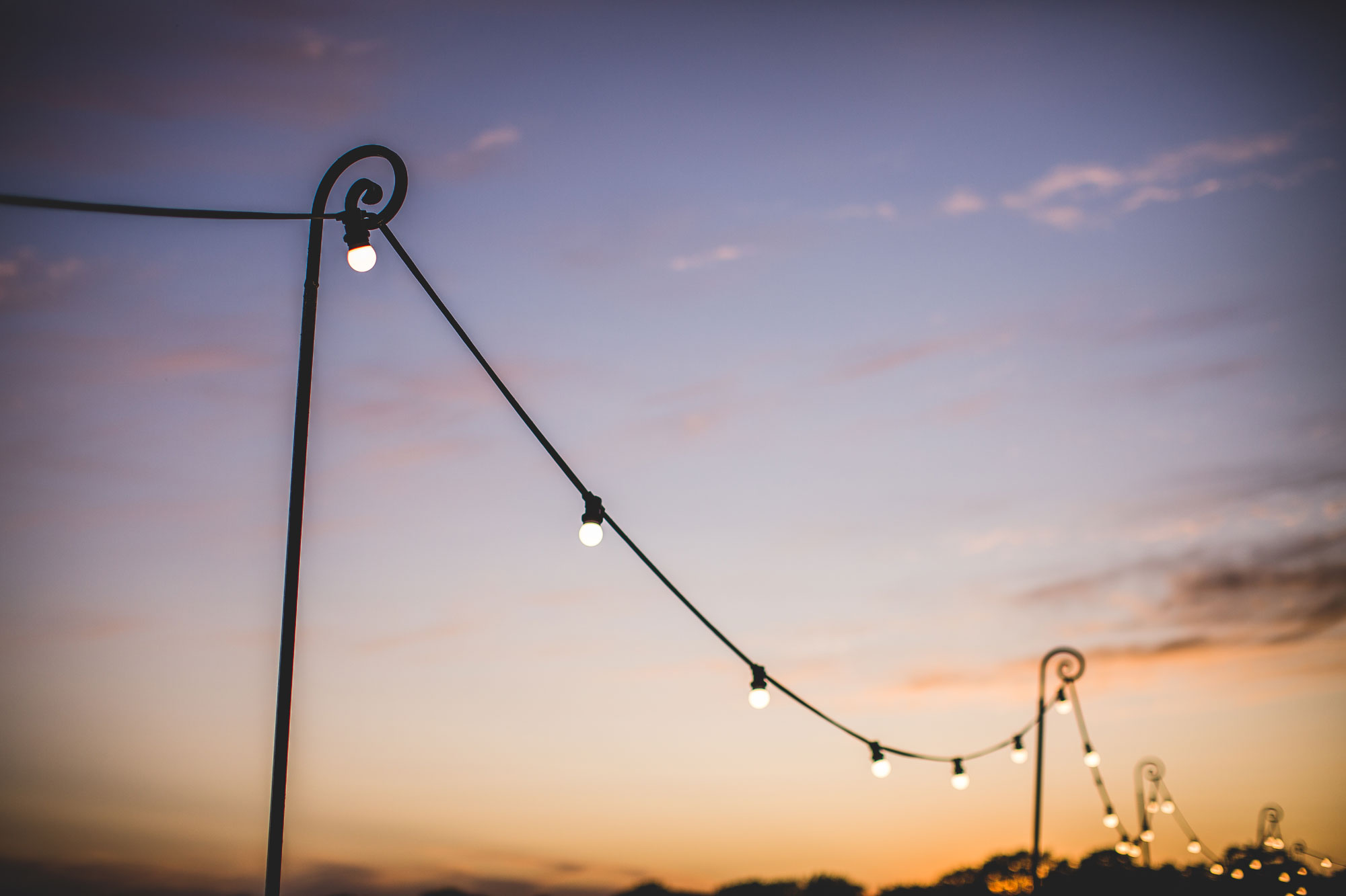 Shepherds Crook Festoon light stand